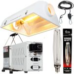 1000w Budget Lighting Package