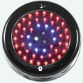 100w-uv-blackstar-led-grow-light
