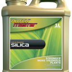 Dutch Master Gold Silica