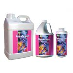 Floralicious Bloom 1-1-1 — 2.5 Gallon