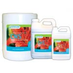 CNS17 Hydroponic Bloom Formula 2-2-5 — Quart
