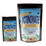 Actinovate Lawn & Garden Fungicide
