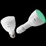 AgroLED Green Flashlight/Lamp