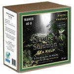 Organic Sea Kelp