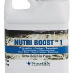 Nutrilife – Nutri Boost (0 – 0 – 1)