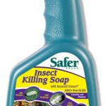 Safer Insect Killing Soap with Seaweed Extract RTU – 32 oz