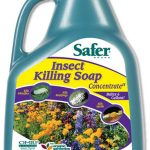 Safer Insect Killing Soap II Concentrate – 1 Gallon