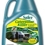 Safer Caterpillar Killer with B.T. Concentrate — 8 oz