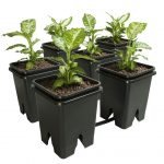 Active Aqua Grow Flow 5-Gal Expansion Kit 3/4″ 6 pot, 5 Gal