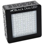 Black Dog LED BD240-U 240w LED Grow Light – LIMITED FINAL STOCK