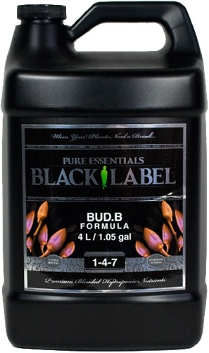 budb_1_1