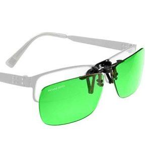 classic-clipons-450x450px-wglasses_1