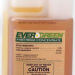 EverGreen Pyrethrum Concentrate – 16 oz (Pint)