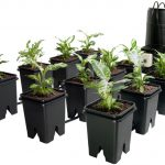 Active Aqua Grow Flow 7-Gal Controller w/5 Gal Bucket Kit – 12 site