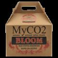 myco2-bloom