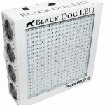 Black Dog LED – PhytoMAX 800W Grow Light