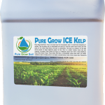 Pure Grow ICE Kelp – Icelandic Kelp
