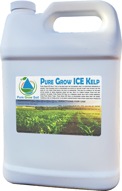pure_grow_ice_kelp