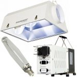 Budget 1000W Complete Radiant Lighting Package – 8in
