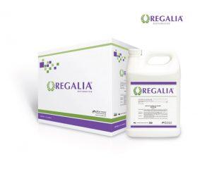 regalia_packaging