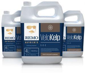 remo_velokelp_rn71720