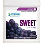 sweetgrape