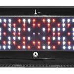 240w HO Blackstar LED Grow Light *DISCONTINUED*